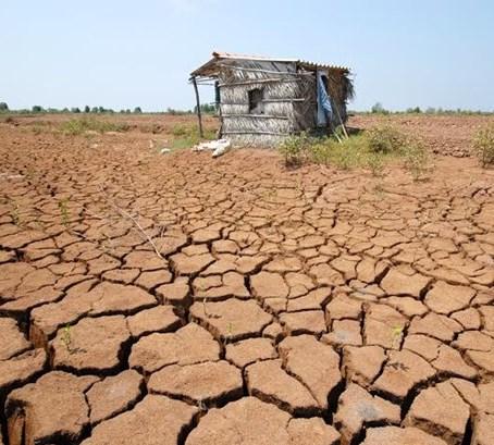 miền tây nhiễm mặn