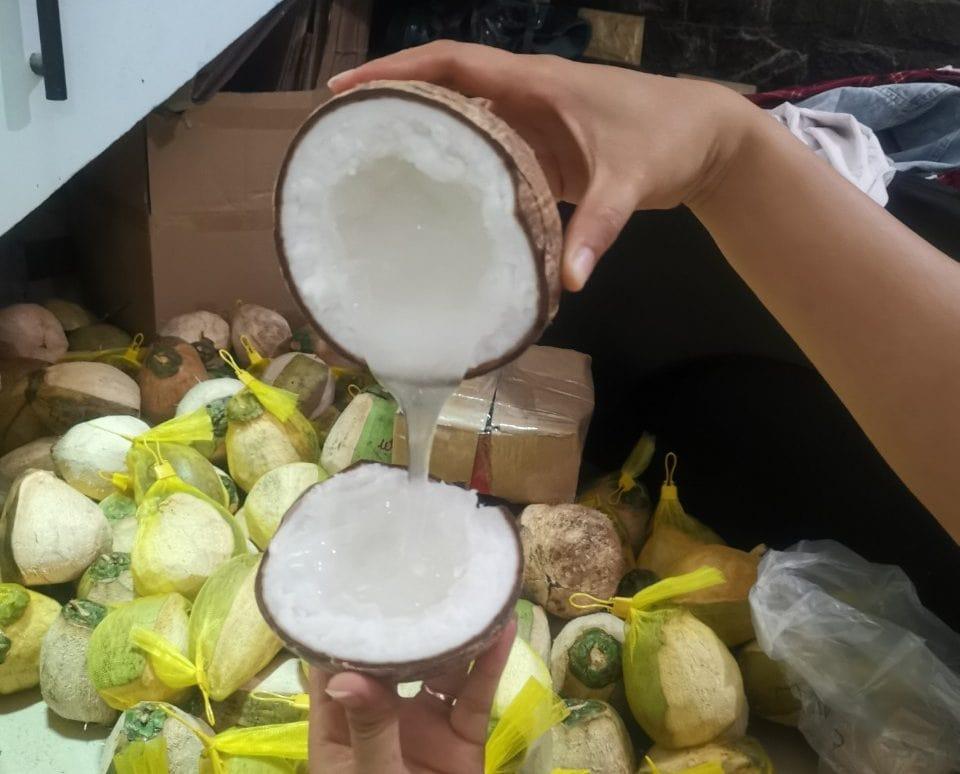 Dừa sáp Trà Vinh có giá dao động từ 105.000Đ đến 165.000Đ/trái