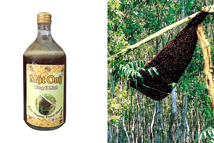 Mật ong rừng U Minh được thu hoạch theo cách thủ công
