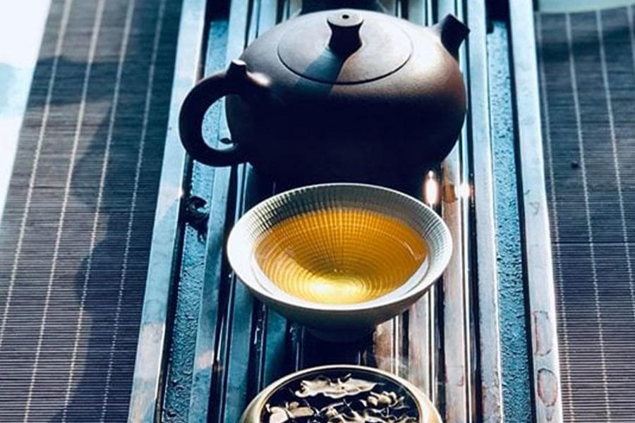 Trà Tuyết shan cổ thụ rất thơm ngon và giàu dưỡng chất